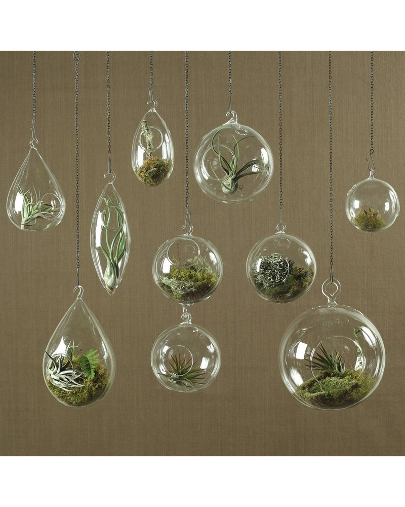 HomArt Hanging Bubble Teardrop Terrarium - Large