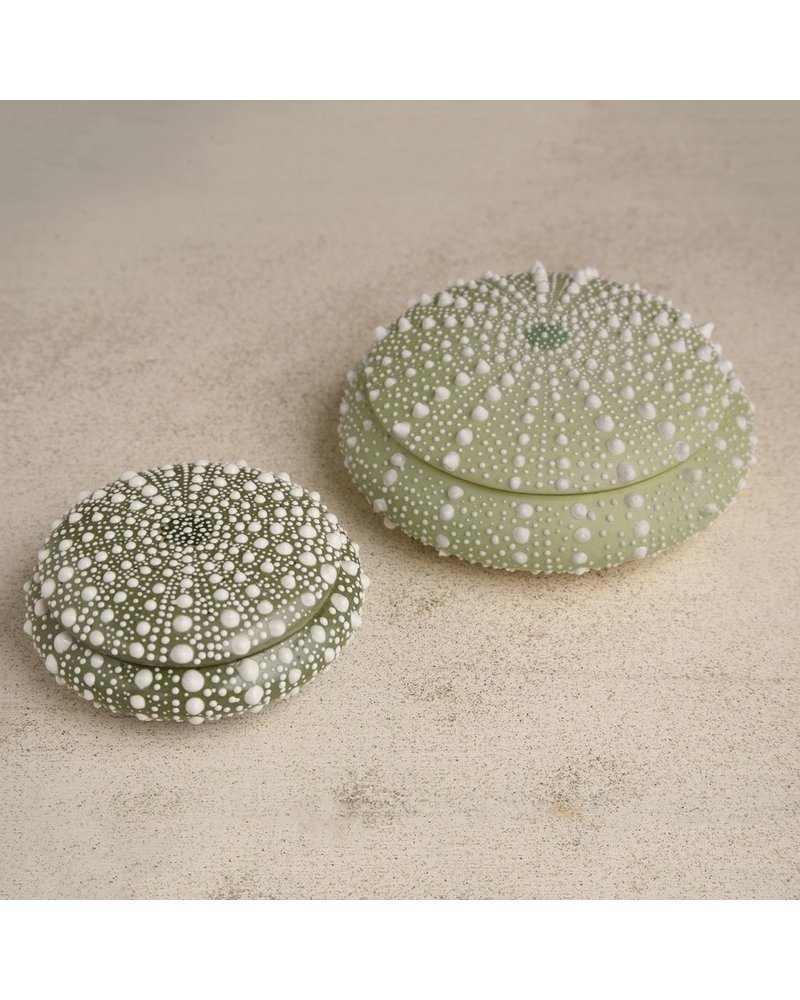 HomArt Green Sea Urchin Round Porcelain Box - Lrg