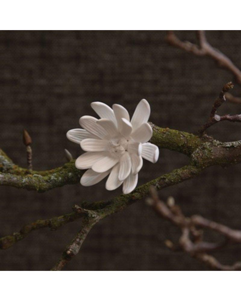 Homart bone china curled magnolia flower white areohome homart bone china curled magnolia flower white mightylinksfo