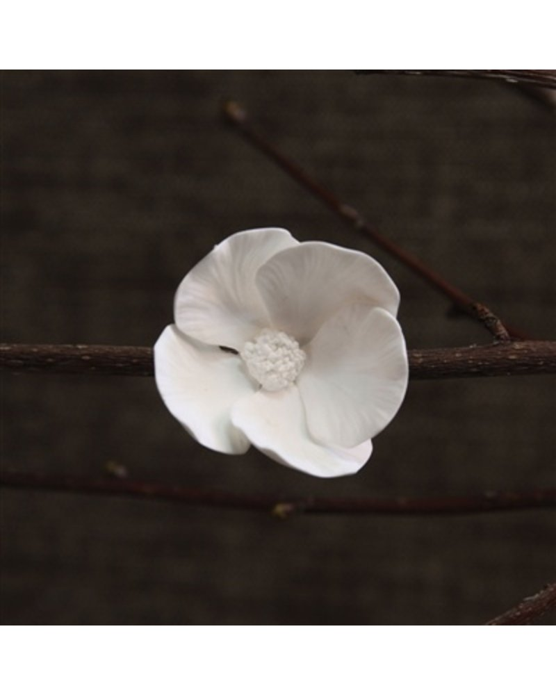 HomArt Bone China Dogwood Flower White