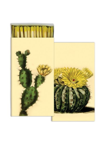 HomArt Cacti HomArt Matches Set of 3 Boxes