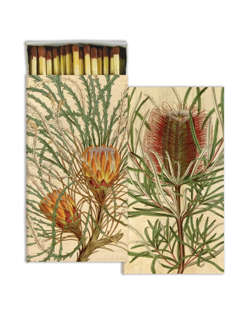HomArt Protea HomArt Matches Set of 3 Boxes