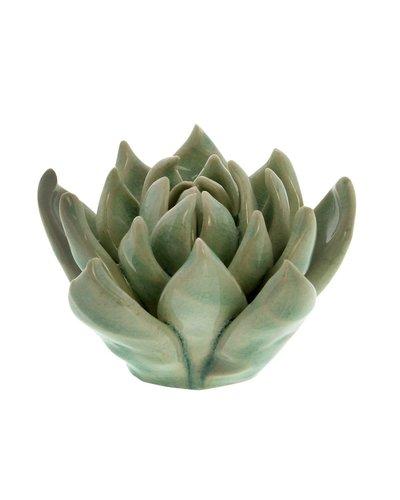 HomArt Ceramic Succulent - Sm