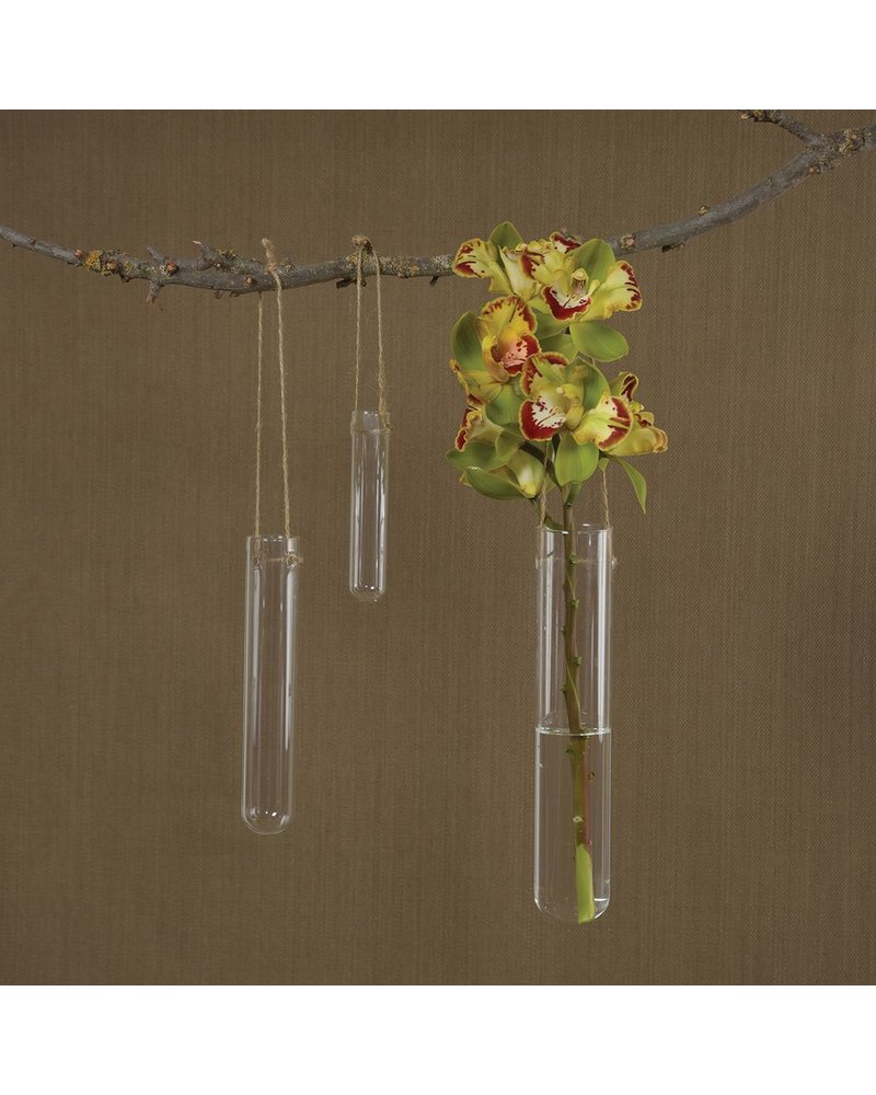 HomArt Hanging Glass Tube Vase - Med