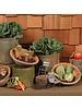 HomArt Carved Wood Vegetable Ornament - Set of 3 - Radish, Turnip, Beet