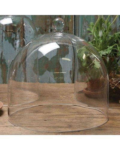 HomArt Glass Dome - Lrg Clear