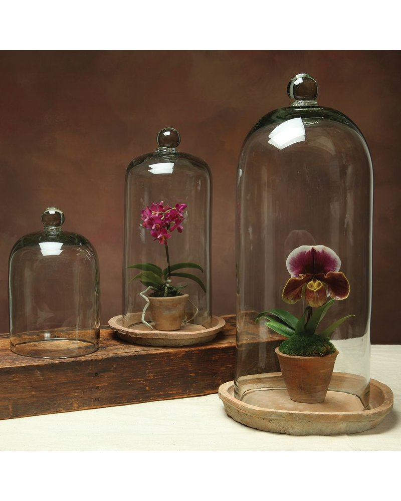 HomArt Glass Dome - Recycled - Lrg