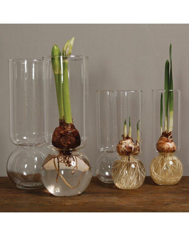 HomArt Bulb Vase Tall Clear