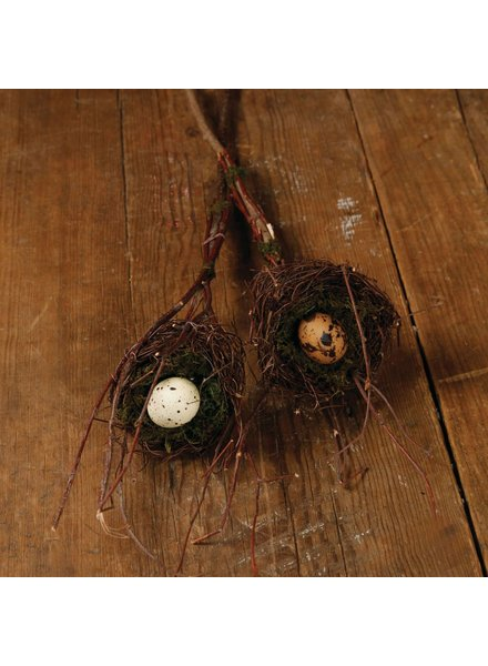 HomArt Sparrows Nest on Stick, Set of 2 - Assorted - White/Brown Eggs
