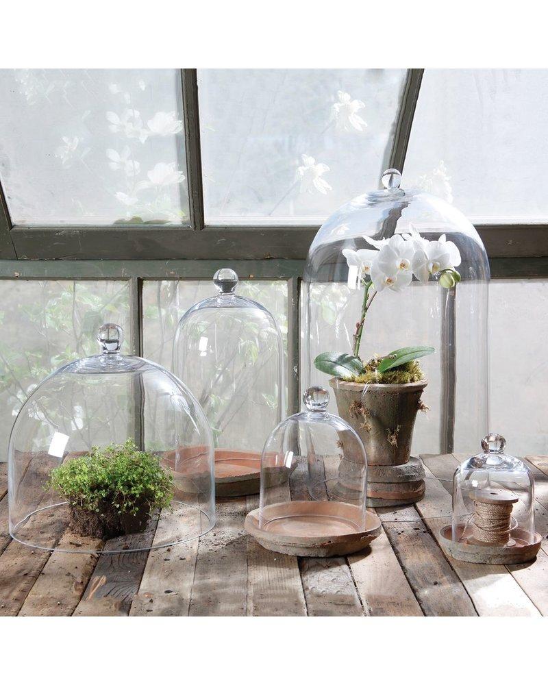 HomArt Glass Dome - Mini - Clear