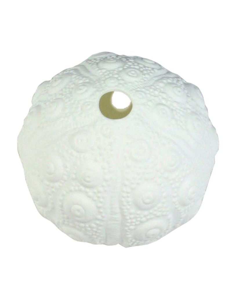 HomArt Urchin Bone China Wall Vase - White