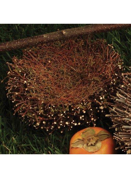 HomArt Birch Twig Nest - Med