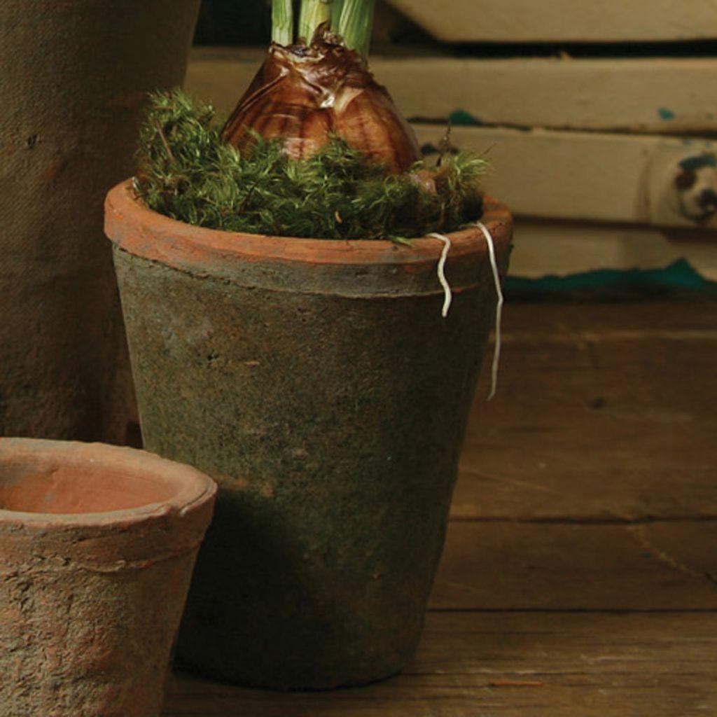 HomArt Rustic Terra Cotta Rose Pot - Med - Antique Red