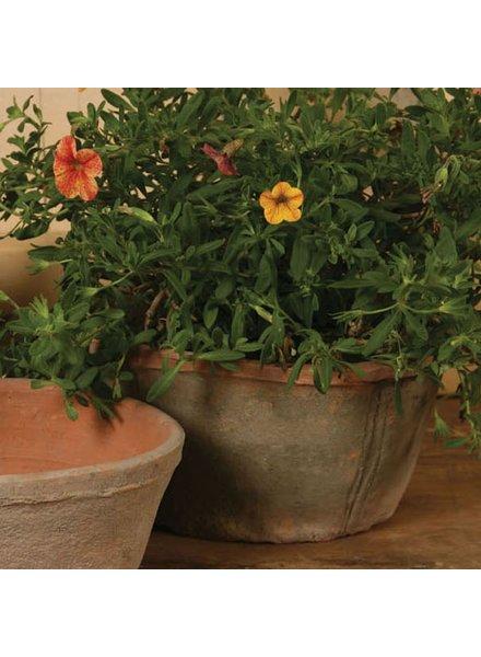 HomArt Rustic Terra Cotta Oval Pot - Lrg - Antique Red