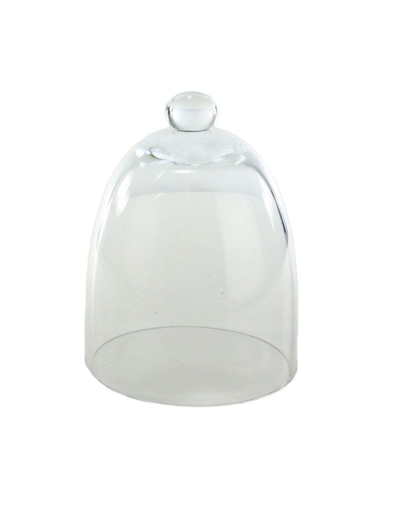 HomArt Glass Dome - Tapered - Sm - Clear