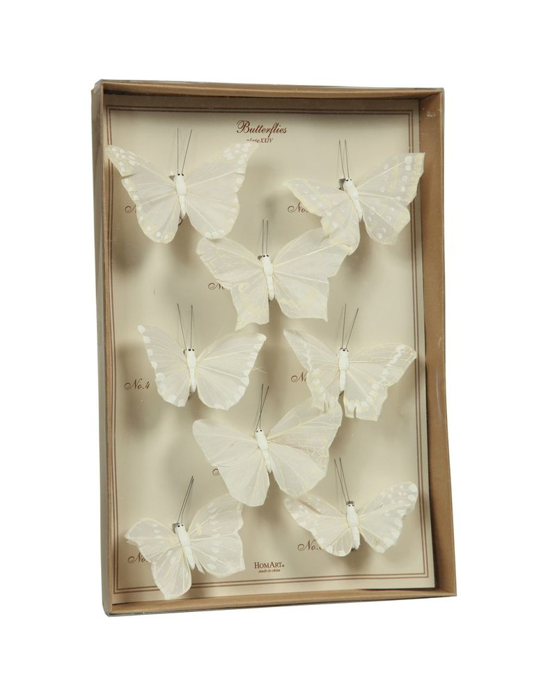 HomArt Butterfly Specimen Box - White