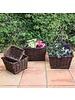 HomArt Willow Square Storage Baskets - Set of 4 - Natural