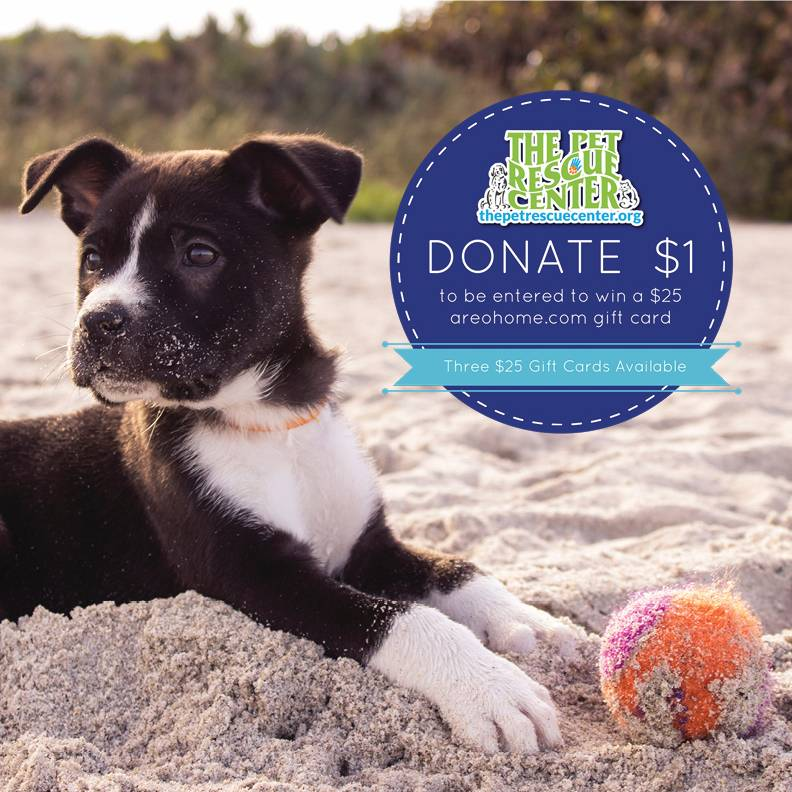 AUGUST 26, 1 - 3PM DOG DAY PET RESCUE EVENT