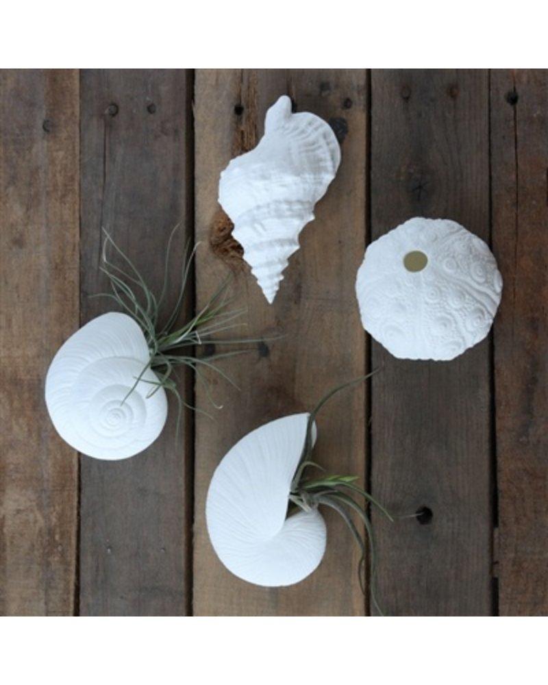 HomArt Nautilus Bone China Wall Vase - White