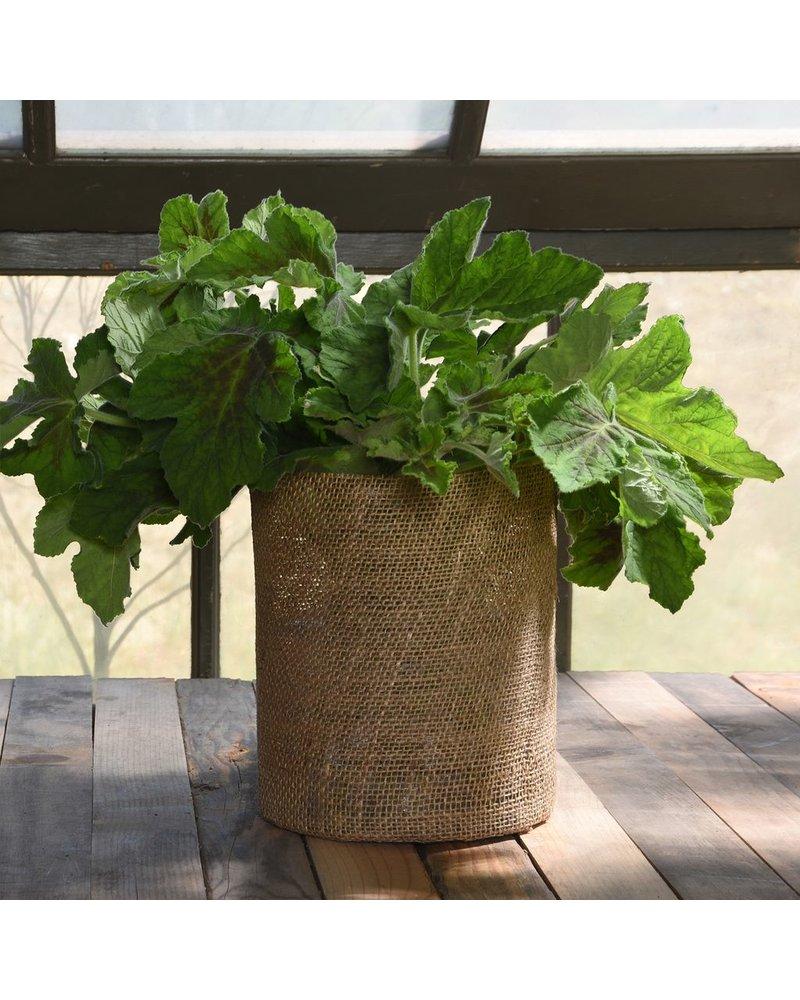 HomArt Burlap Vase - Extra Lrg - Natural Burlap