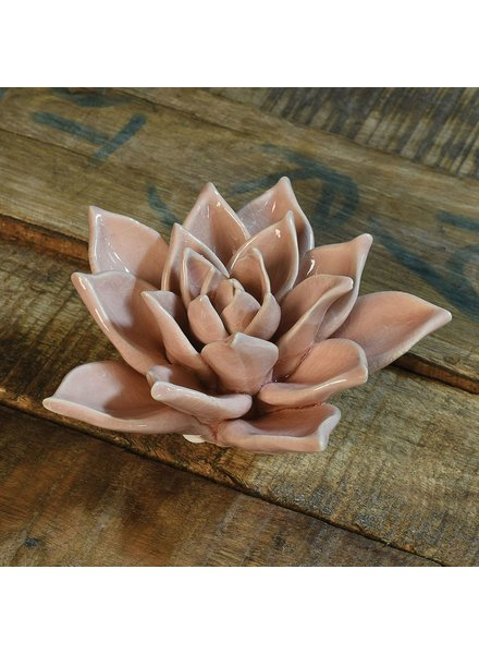 HomArt Ceramic Succulent - Blush