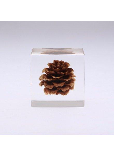 "Sola Cube Karamatsu Acrylic Cube 1.6"""