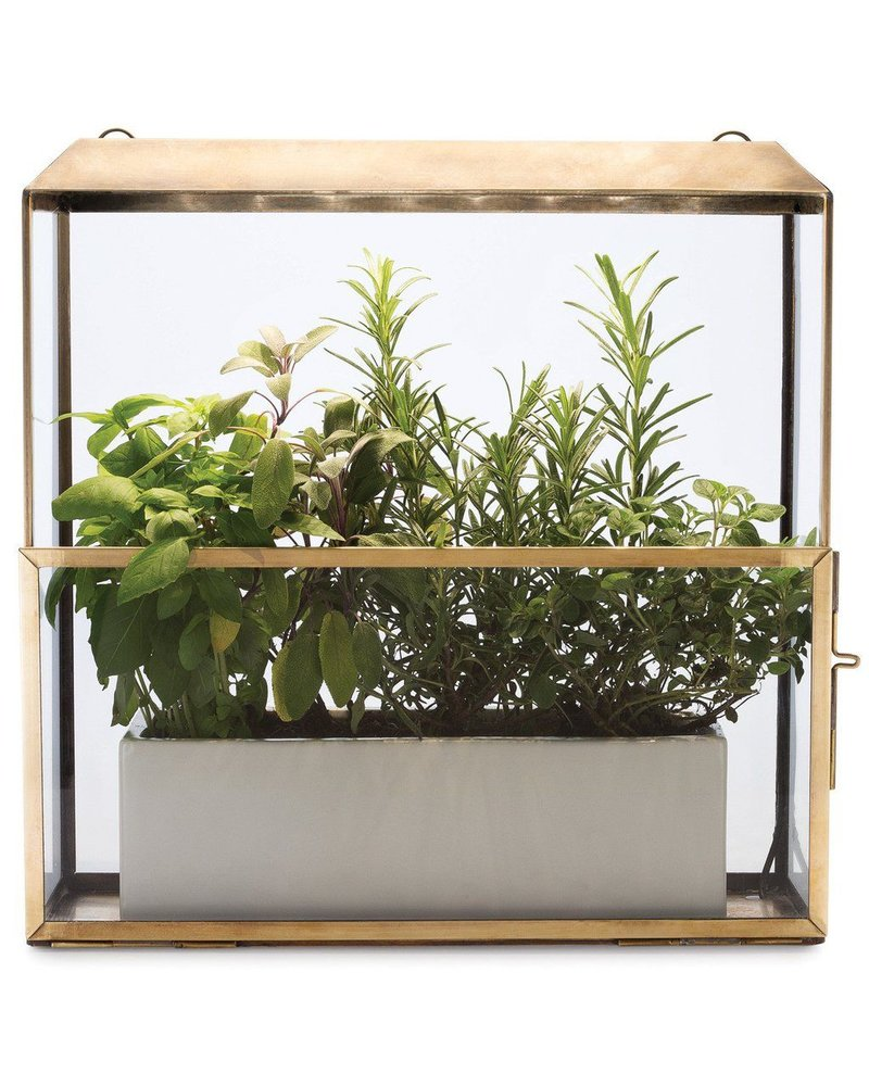 Modern Sprout Plant Growhouse