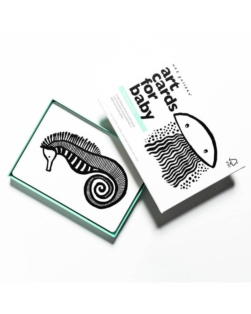 Sea Collection Art Cards For Baby