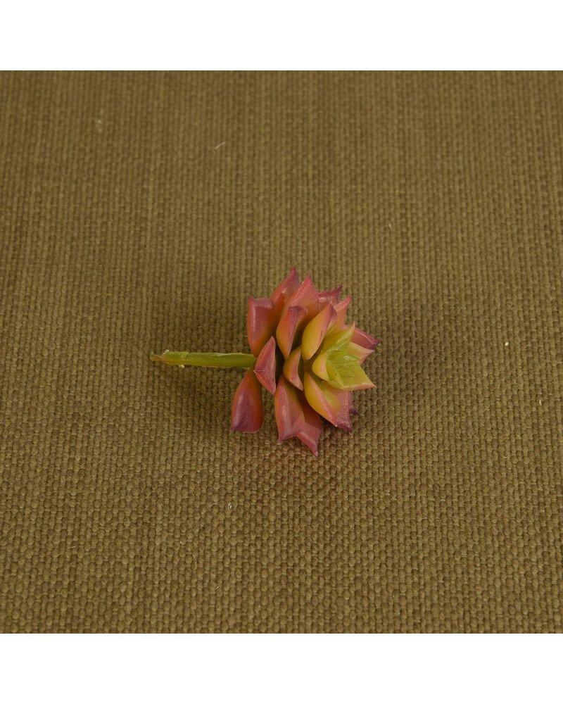 HomArt Faux Echeveria Succulent - Sm - Red