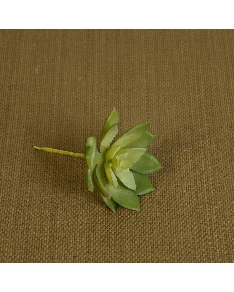 HomArt Faux Echeveria Succulent - Med - Green