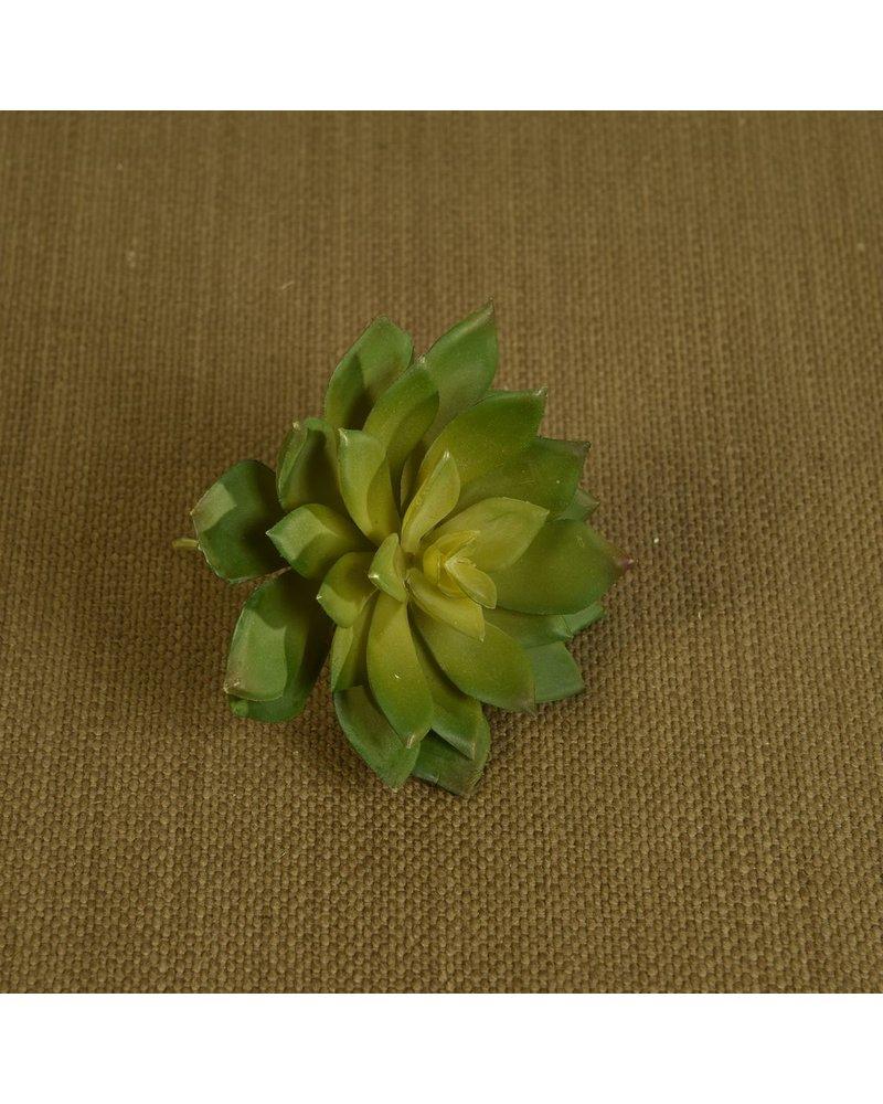 HomArt Faux Echeveria Succulent - Lrg - Green