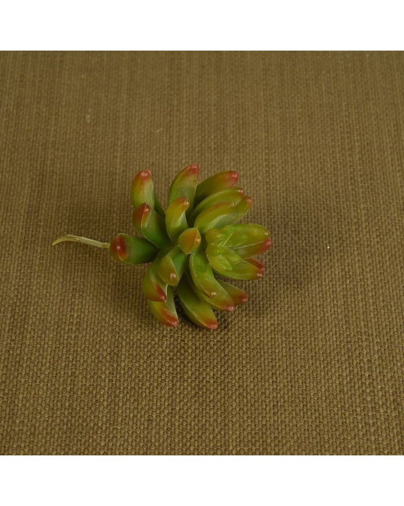 HomArt Faux Succulent - Lrg - Red