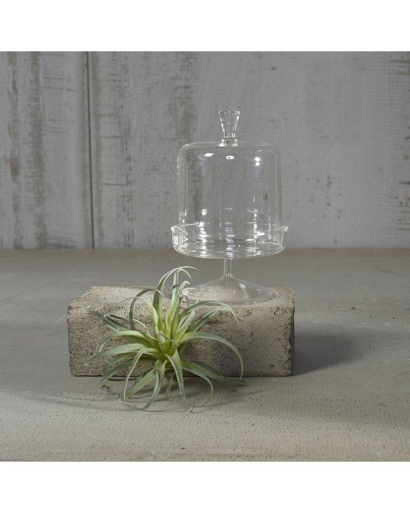 HomArt Vera Glass Dome & Pedestal