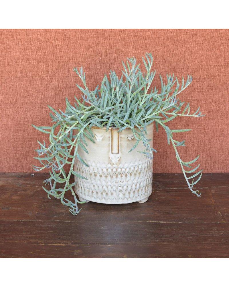 HomArt Clive Ceramic Cachepot - Lrg - Fancy Beige