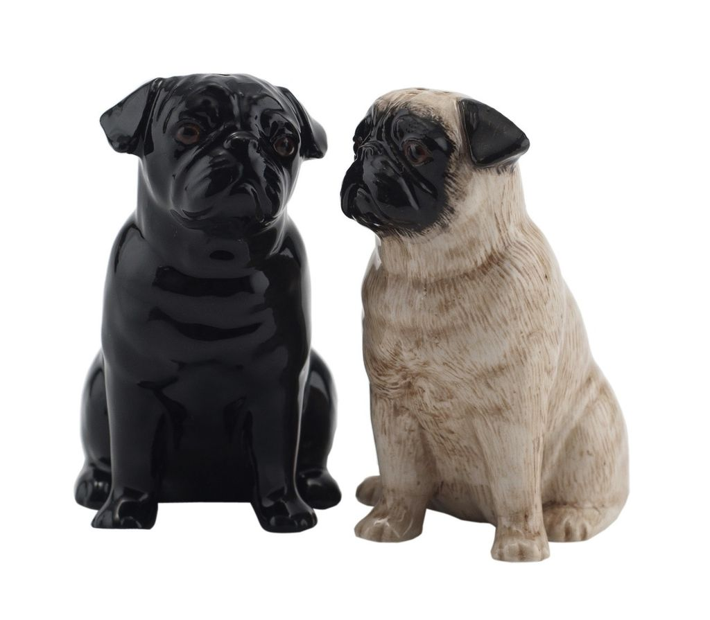 Europe Pug salt and pepper fawn and black