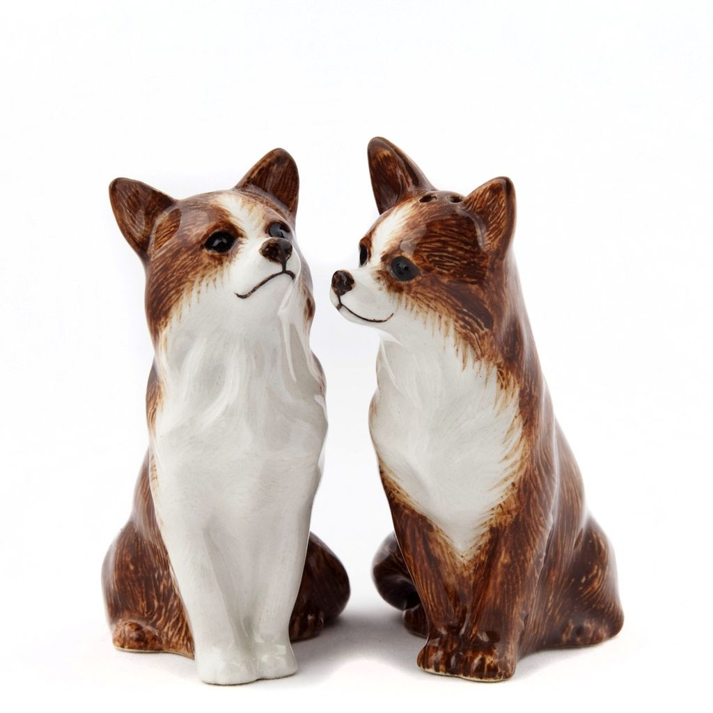 Europe Chihuahua salt and pepper
