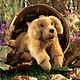 Australia Golden Retriever Puppy Puppet