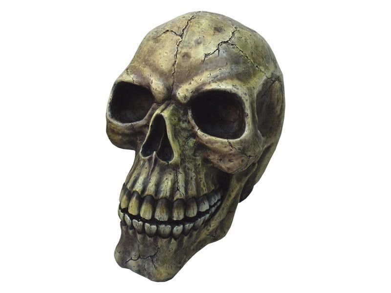 Australia 43CM JUMBO SKULL MONEY BOX