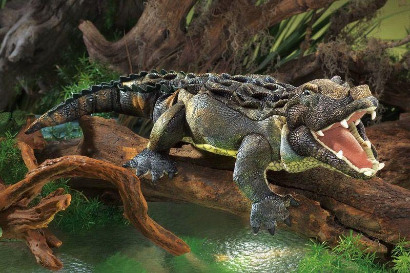 Australia American Alligator Puppet