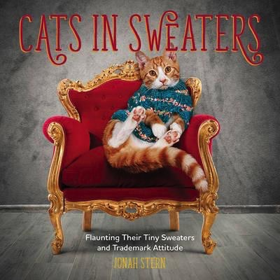 Australia Cats in Sweaters