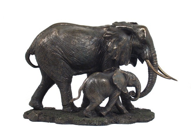Australia Elephant - Parent and child