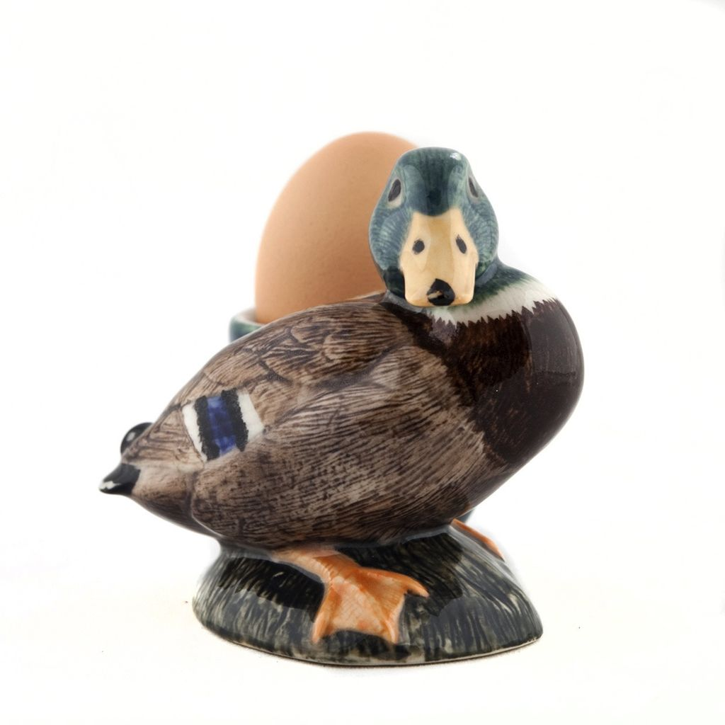 Europe Mallard drake Duck with egg cup