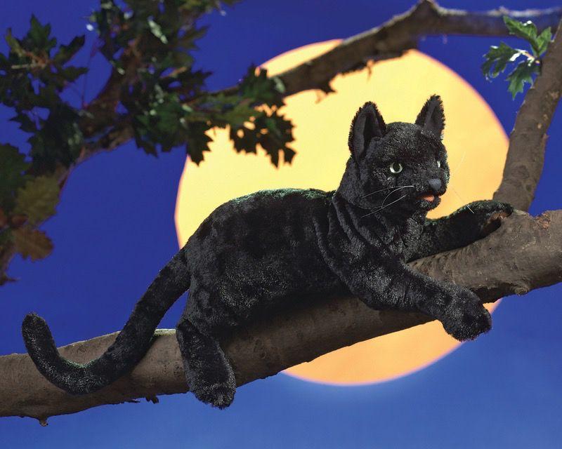 Australia Cat Black Puppet