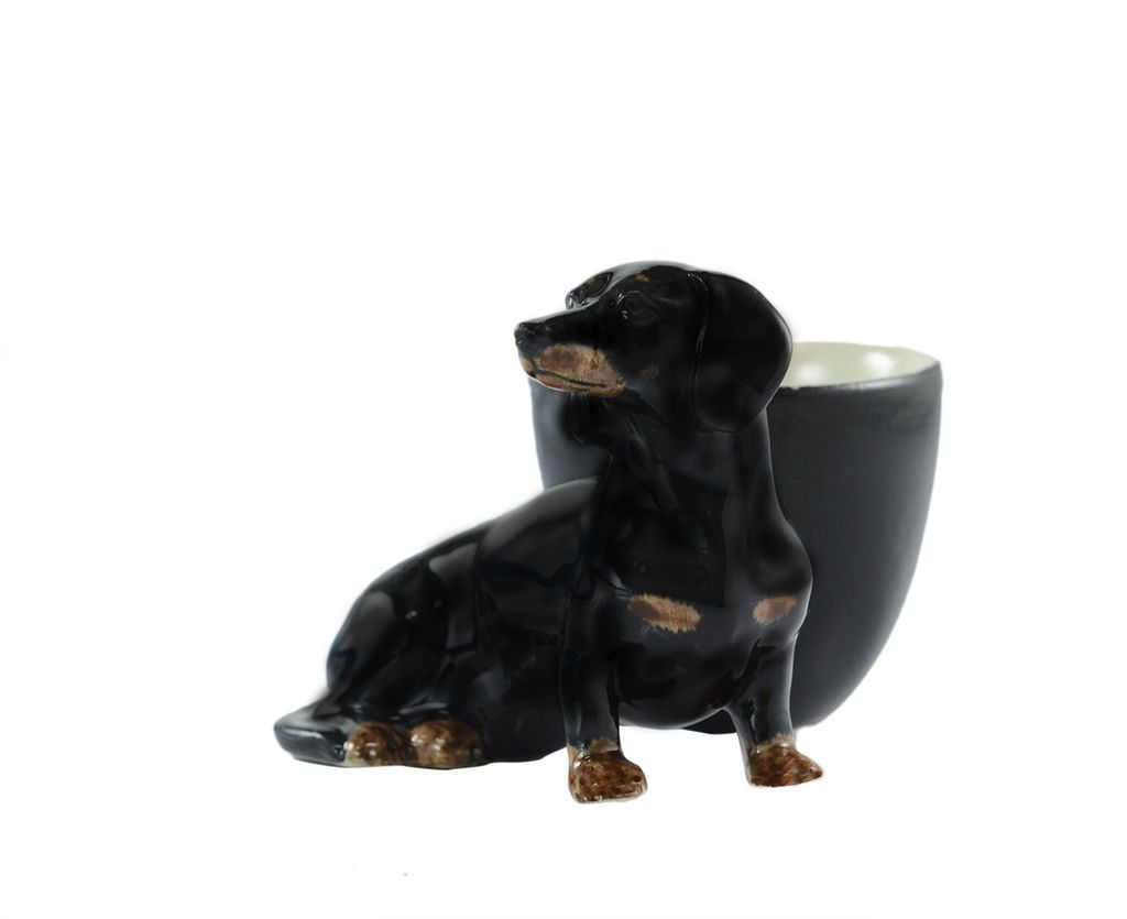 Europe Dachshund with egg cup black/tan