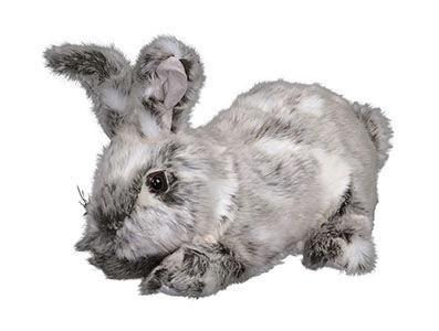 USA Rabbit Hugs, Spotted