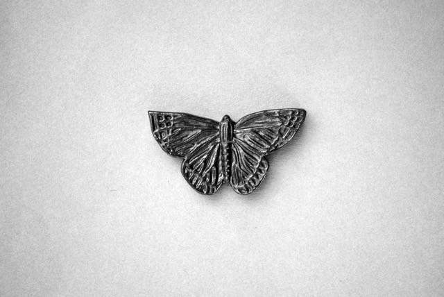 USA Curio Butterfly