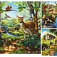 Australia Rburg - Forest Zoo & Pets Puzzle 3x49pc