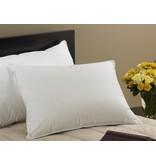 Kingsley Snow White Down Sleeping Pillows