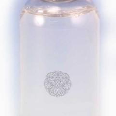 Zodax Illuminaria Twigs Flowers Refill/Golden Acorn