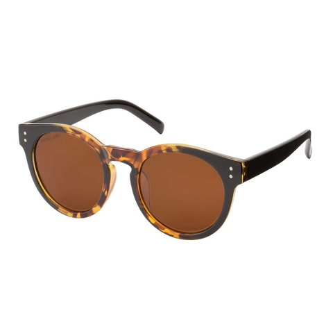 Logan Sunglasses Brown